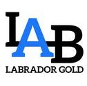 This image has an empty alt attribute; its file name is LAB-square-logo-2.png